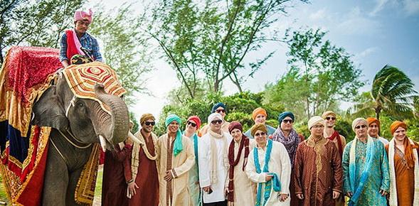 indian elephant wedding