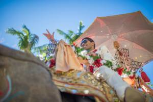 Indian Wedding Baraat Elephant